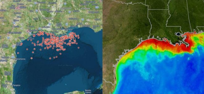 stop-gaz-de-schiste-offshore-fracking-wells-in-the-gulf-of-mexico-the-gulf-of-mexicos-dead-zone-credit-ecowatch-carleton-edu