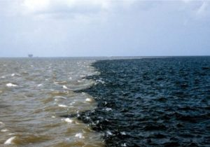 the-gulf-of-mexicos-dead-zone-with-an-offshore-fracking-well-in-the-horizon-credit-oceandoctor-org